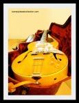 barney's guitar